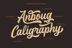 Anboug Product Image 4