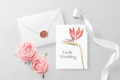 """Watercolor ClipArt """"Tropical Flowers Product Image 5"""