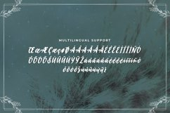 Brickrow - Script Typeface Product Image 4
