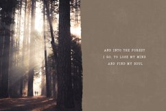 Into the Wild Serif Font Product Image 4