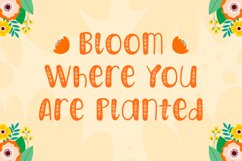 Harvest Day - Sprinkles Font Product Image 6
