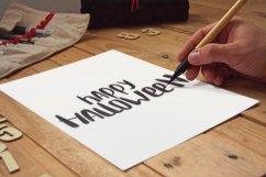Popular handwritter decorative script Product Image 3