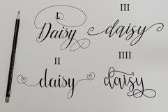 Daisy Script Product Image 2
