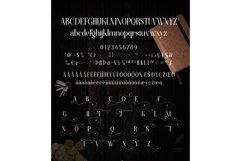 Web Font Florva Product Image 4