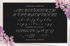 Sagita Script Product Image 6