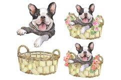 French Bulldog Watercolor dog clipart. Watercolor pet Product Image 4