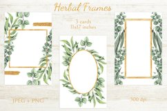 Herbal Frames Product Image 3