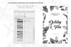 Botanical Brushes for Photoshop Product Image 2