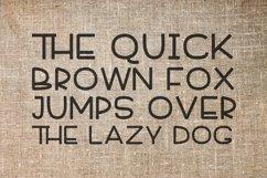 Font Bundle 5 Exclusive Fonts!  Product Image 4