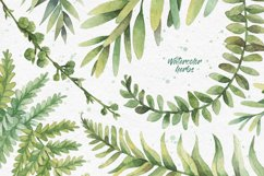 Watercolor herbs. Clipart collection Product Image 2