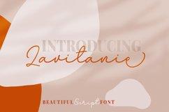 Lavitanie Monoline Script Font Product Image 1