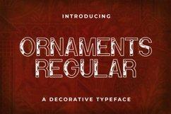 Web Font Ornaments Product Image 1