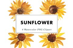 Sunflower Illustrations Watercolor | Clipart PNG Product Image 1