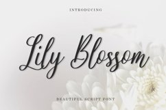 Web Font Lily Blossom Product Image 1