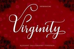 Web Font Virginity Script Product Image 1