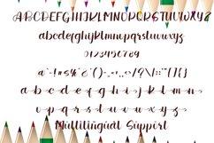 Wedding Signature   Smart & Luxury Font Product Image 2