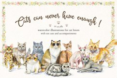 Cats can never have enough! Product Image 1
