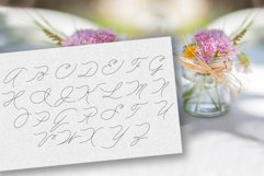 Peony script display font Product Image 3