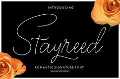 Stayreed Product Image 1