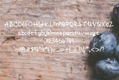 Blueberry Daisy: A Fun Handwritten Font Product Image 2