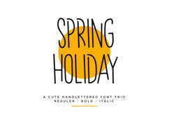 Spring Holiday | 3 Handwritten Font Product Image 1
