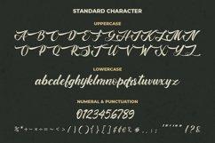 Vintage Script - The Baghotta Font Product Image 6