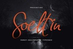 Web Font Soeltin Typeface Product Image 1
