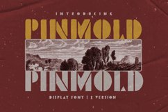Pinmold - Modern Stencil Font Product Image 6