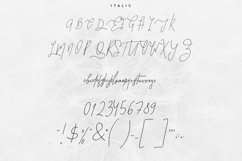 Good Wish Signature font Product Image 6