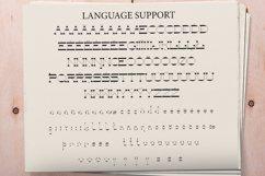 NewspaperSlab Serif font Product Image 2