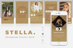 Stella Instagram Stories Template Product Image 1