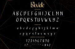 Bloviate Product Image 9