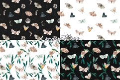Night Moth. Watercolor Patterns and Clipart Product Image 3