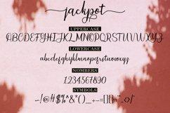 Jackpot Script Product Image 6