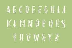Onferia - decorative leaf font Product Image 2