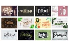 Mega Exclusive Font Bundle - 350 Font Product Image 5