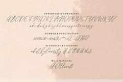 Web Font Ramble - A Signature Font Product Image 3