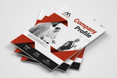 Company Profile Product Image 1