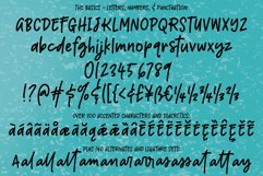 Boisterous - A casual handwriting font! Product Image 2