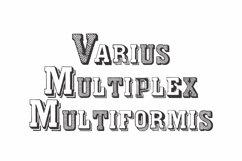 Varius Multiplex Multiformis  Product Image 1