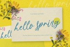 Web Font Springtown Font Product Image 3