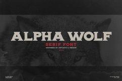 Alpha wolf - Serif font Product Image 1