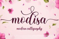 Modisa Product Image 1