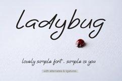 Ladybug | Simple Font Product Image 1