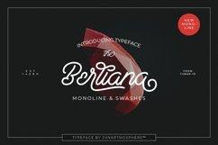 Berliana Monoline Font Extrass Logo Product Image 1