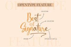 Slandia Signature Product Image 9