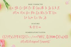 Hello Lovely - A Beautiful Script Font Product Image 2