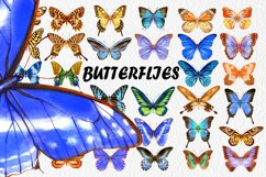 34 Hand-Painted Watercolor Butterflies Product Image 1