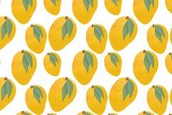 Mango hand drawn illustrations Product Image 6