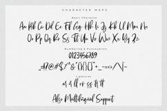 Andaretta - Brush Font Product Image 4